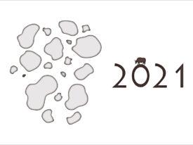 2021 strat